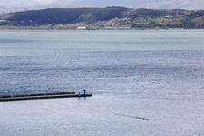 Sapanca Gölündeki su seviyesi ne durumda?